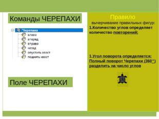 Команды ЧЕРЕПАХИ Поле ЧЕРЕПАХИ Правило вычерчивание правильных фигур: Количе