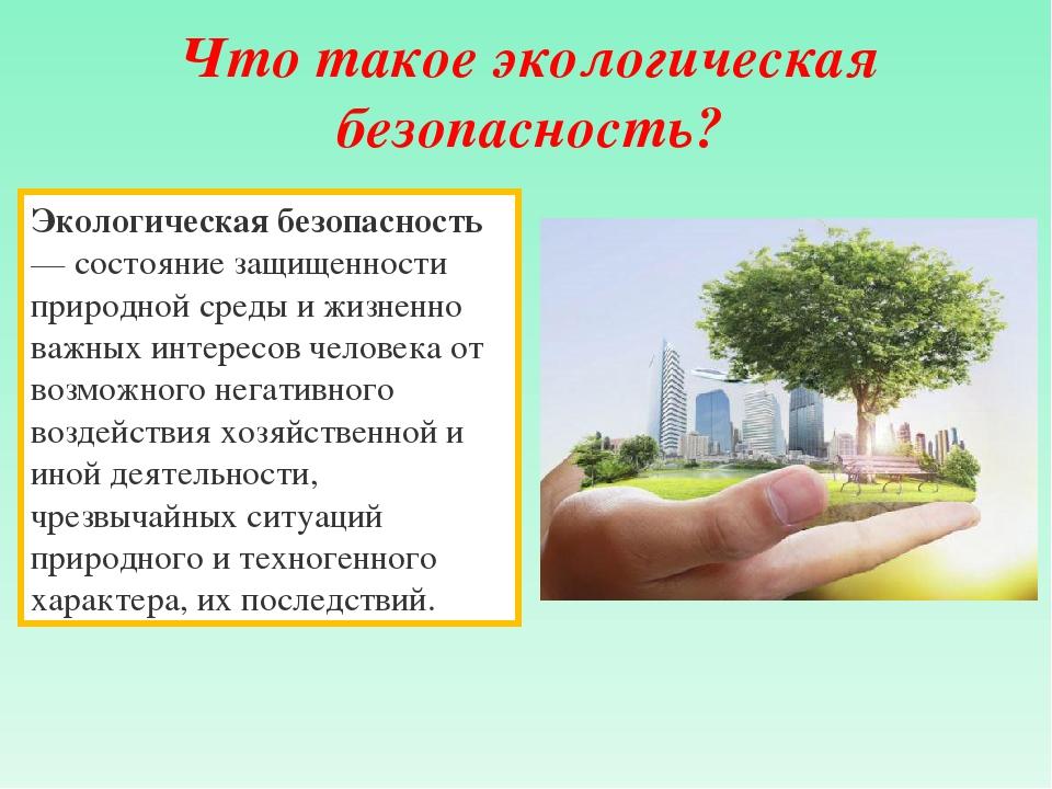 Реферат по теме экологическая безопасность россии 1272