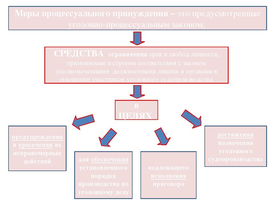 Меры процессуального принуждения