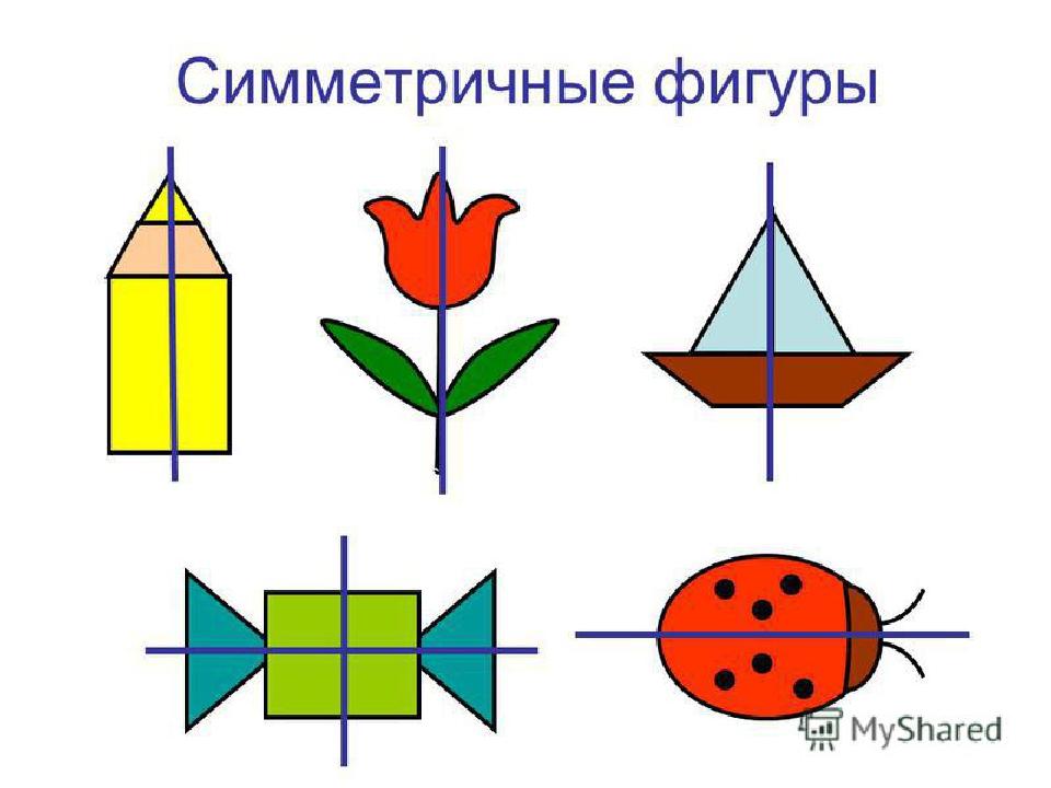 Симметрия для детей доклад 5864