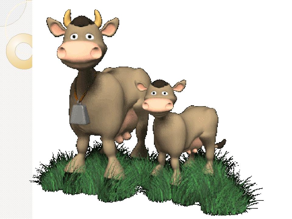 Открытки книга, корова в картинках анимация