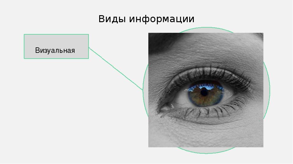 Визуальная Виды информации В качестве цвета вспомогательных линий можно испо...