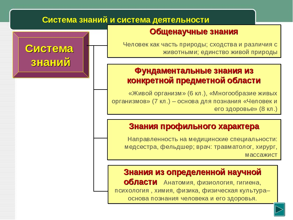 Система знаний и система деятельности Система знаний Общенаучные знания Челов...