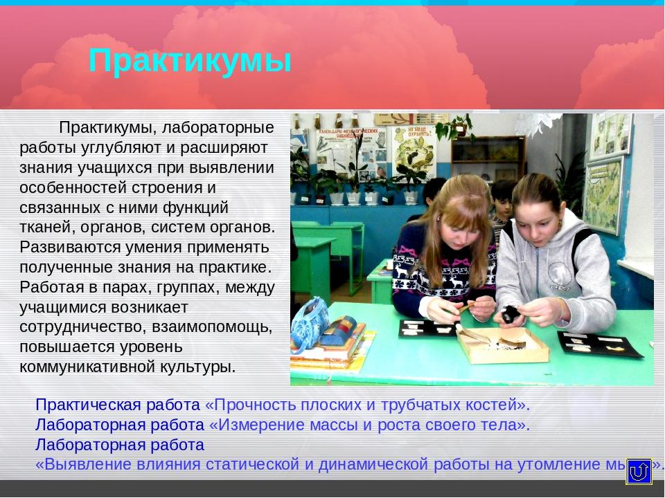 Практикумы Практикумы, лабораторные работы углубляют и расширяют знания учащи...