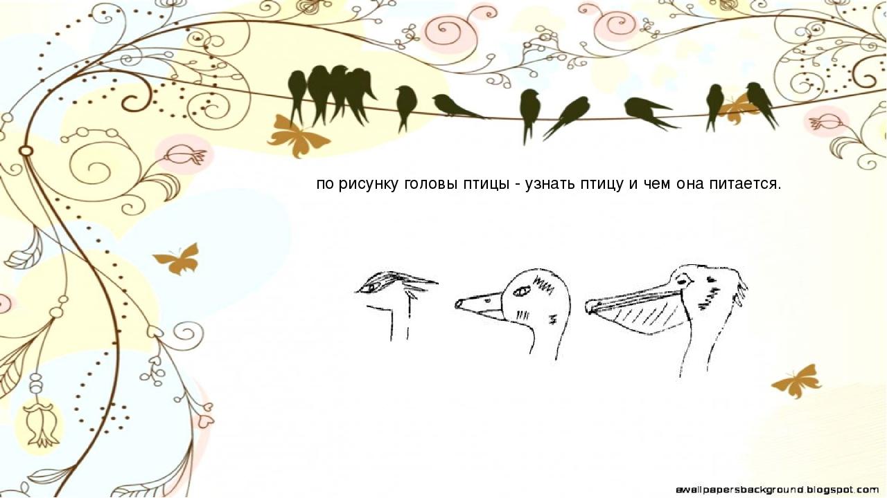 Рисунок для детей перец