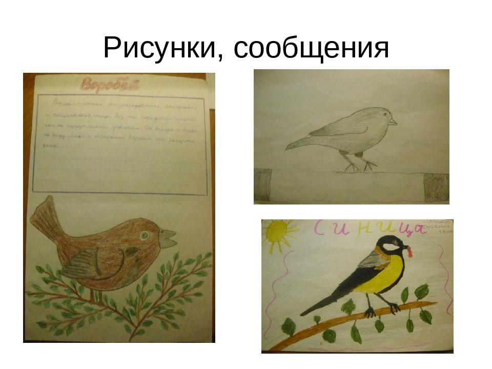 Рисунки, сообщения