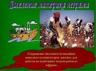 Сокращение численности индейцев вынудило колонизаторов завозить для работы на