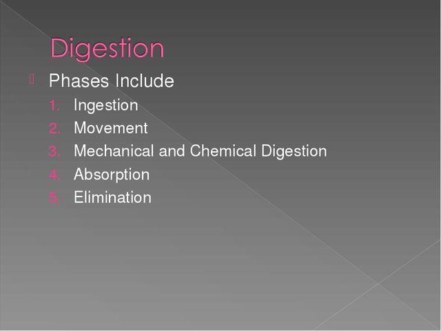 Презентация по английскому языку на тему Пищеварительная система  phases include ingestion movement mechanical and chemical digestion absorptio