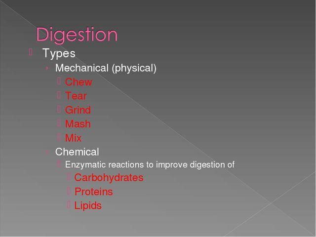 Презентация по английскому языку на тему Пищеварительная система  types mechanical physical chew tear grind mash mix chemical enzymatic react