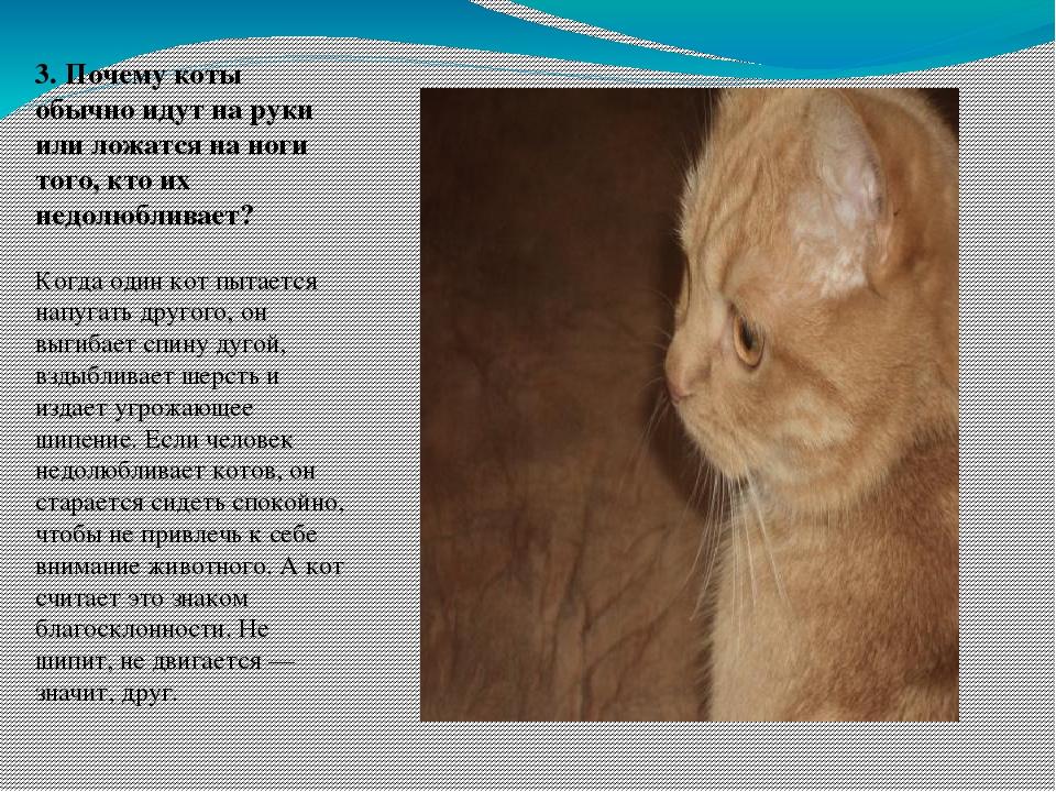 зачем кошка ложится на руку проведения выставки-ярмарки устойчивых