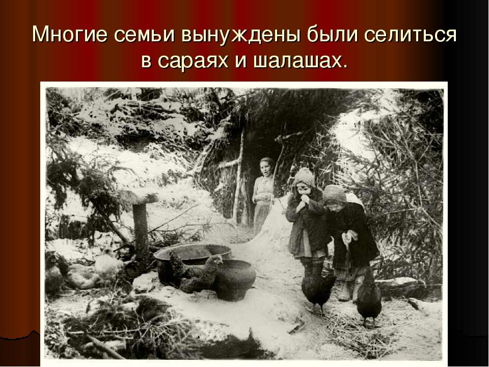 Многие семьи вынуждены были селиться в сараях и шалашах.