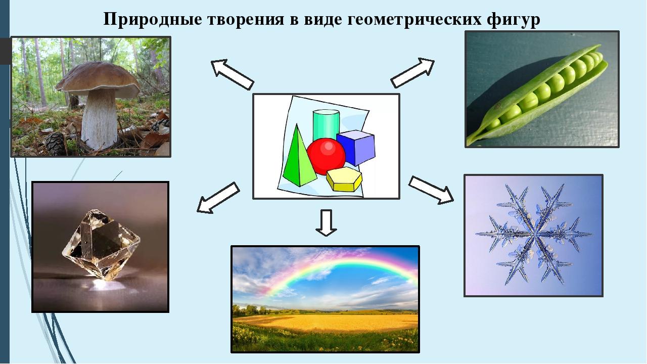 Природные творения в виде геометрических фигур