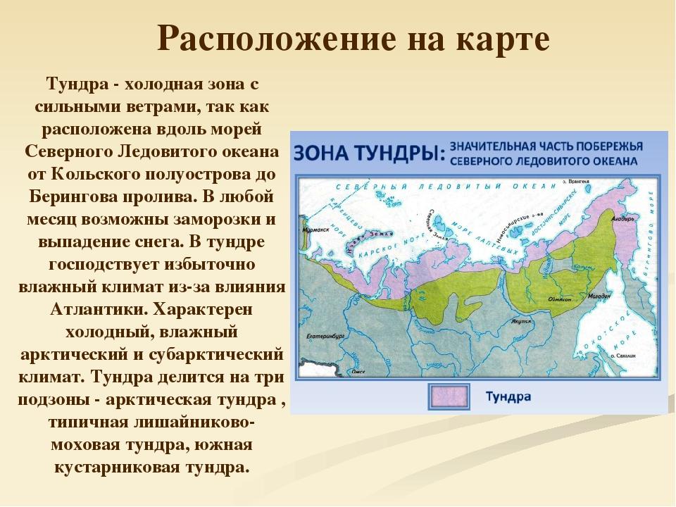 остальных где находится тундра на карте россии фото выступают против введения