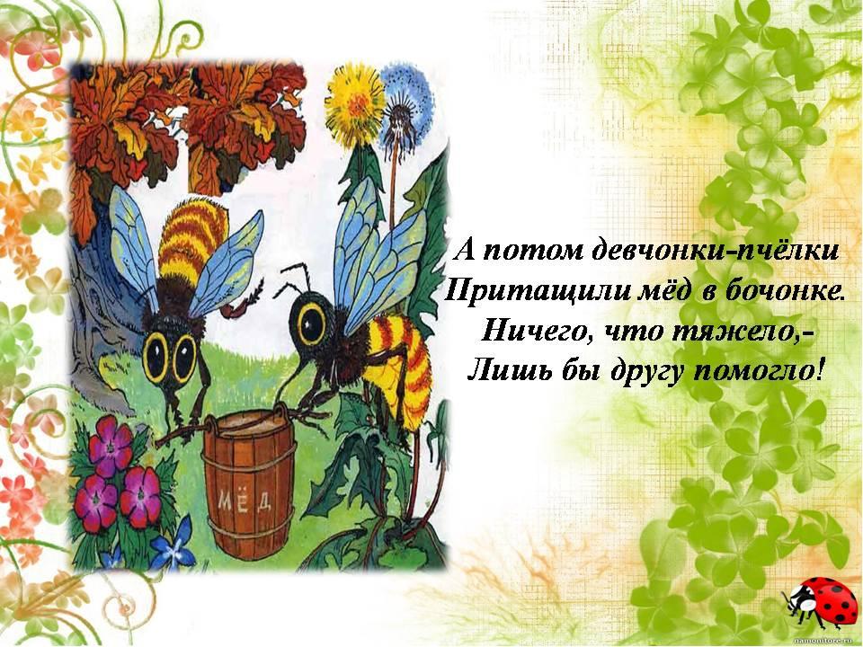 Картинки для дошкольников лекарственные травы