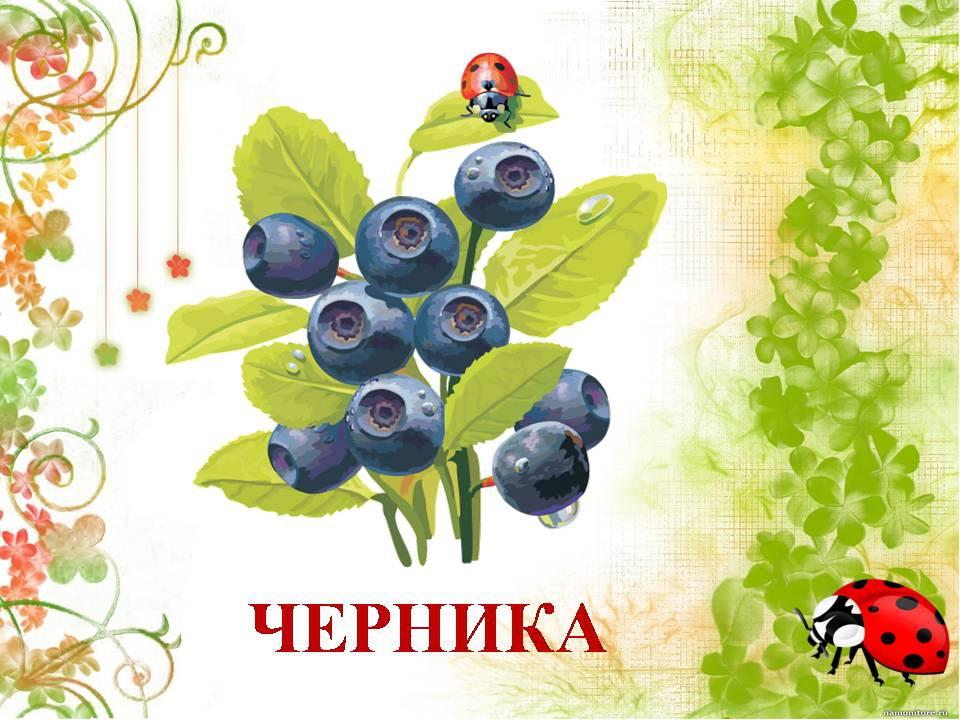 Открытки для, картинки с надписью растения