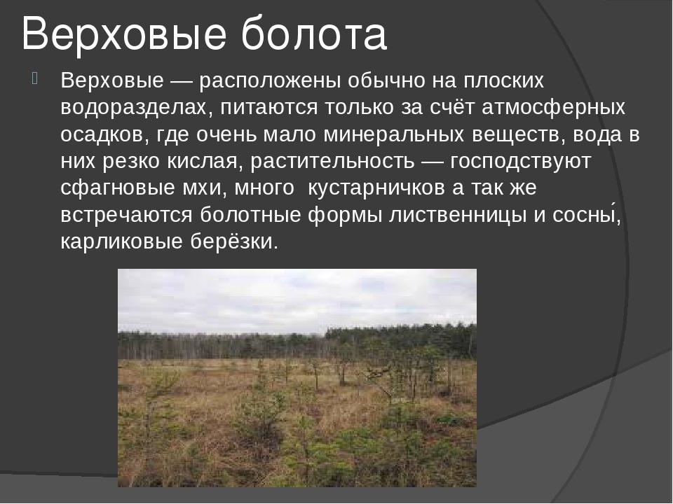 удобна болота россии сообщение современные