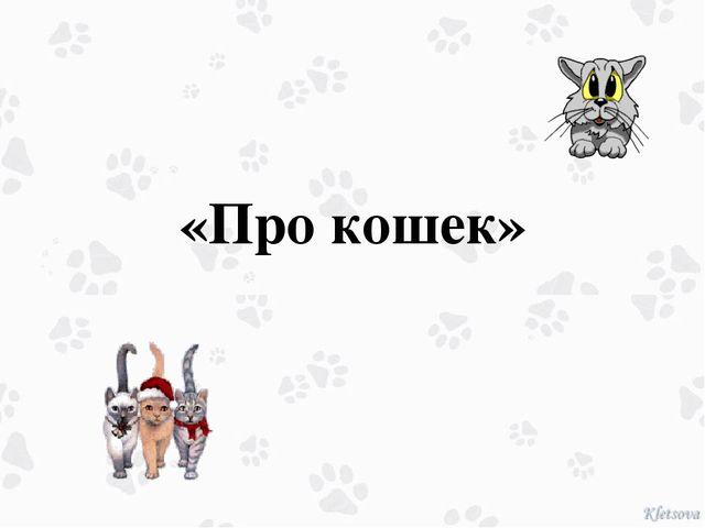 «Про кошек»