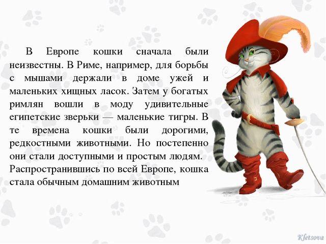 В Европе кошки сначала были неизвестны. В Риме, например, для борьбы с мышам...
