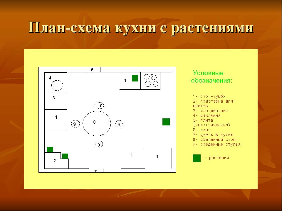 План-схема кухни с растениями