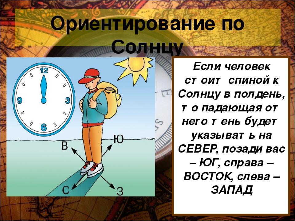 Ориентирование по Солнцу Если человек стоит спиной к Солнцу в полдень, то пад...