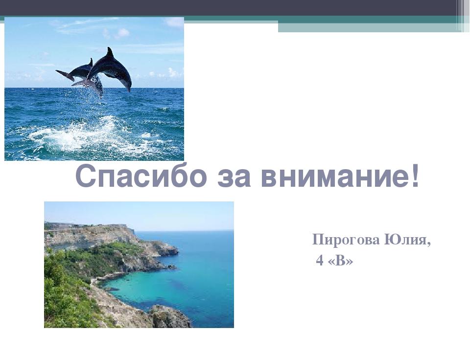 Спасибо за внимание! Пирогова Юлия, 4 «В»