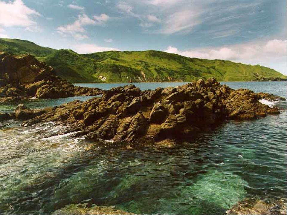 Доклад по острову сахалин 1134