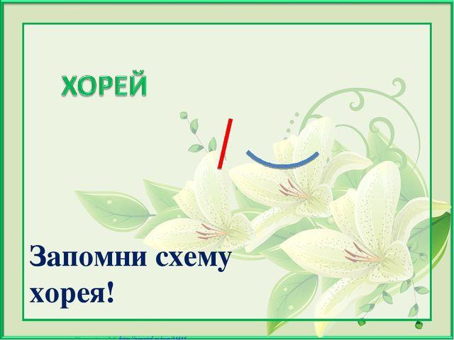 Запомни схему хорея! Матюшкина А.В. http://nsportal.ru/user/33485