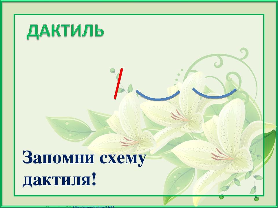 Запомни схему дактиля! Матюшкина А.В. http://nsportal.ru/user/33485