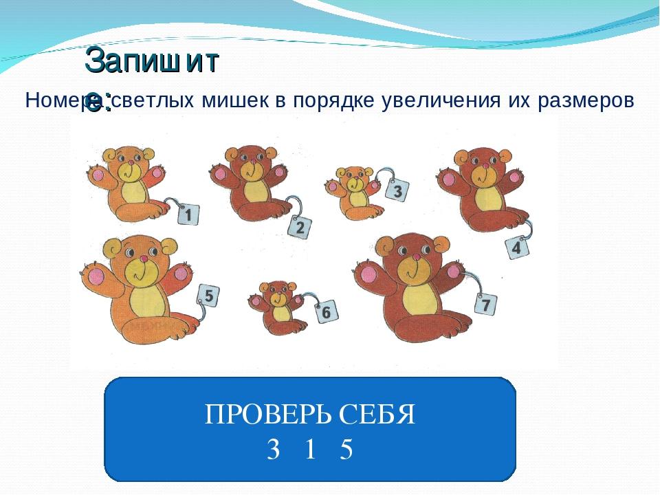 Запишите: Номера светлых мишек в порядке увеличения их размеров ПРОВЕРЬ СЕБЯ...