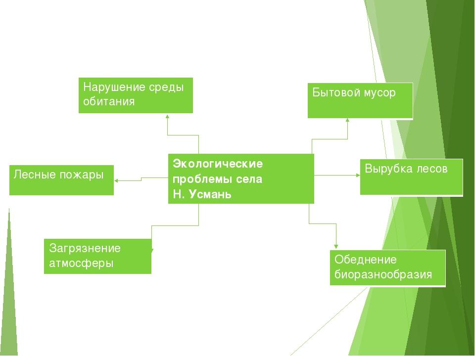 Экологическиепроблемы села Н. Усмань Нарушение среды обитания Бытовоймусор За...