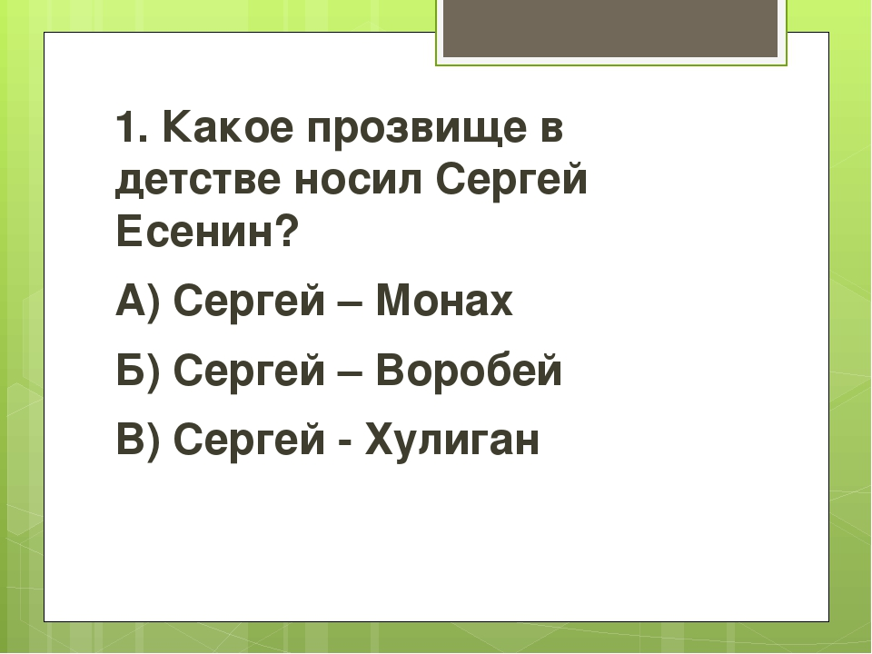 1. Какое прозвище в детстве носил Сергей Есенин? А) Сергей – Монах Б) Сергей...