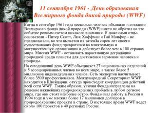 11 сентября 1961 - День образования Всемирного фонда дикой природы (WWF) Ког