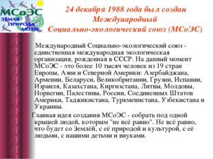 24 декабря 1988 года был создан Международный Социально-экологический союз (