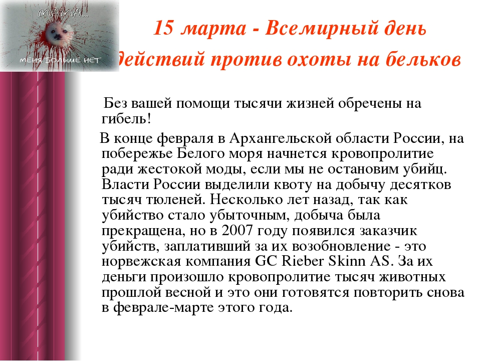 15 марта - Всемирный день действий против охоты на бельков Без вашей помощи т...