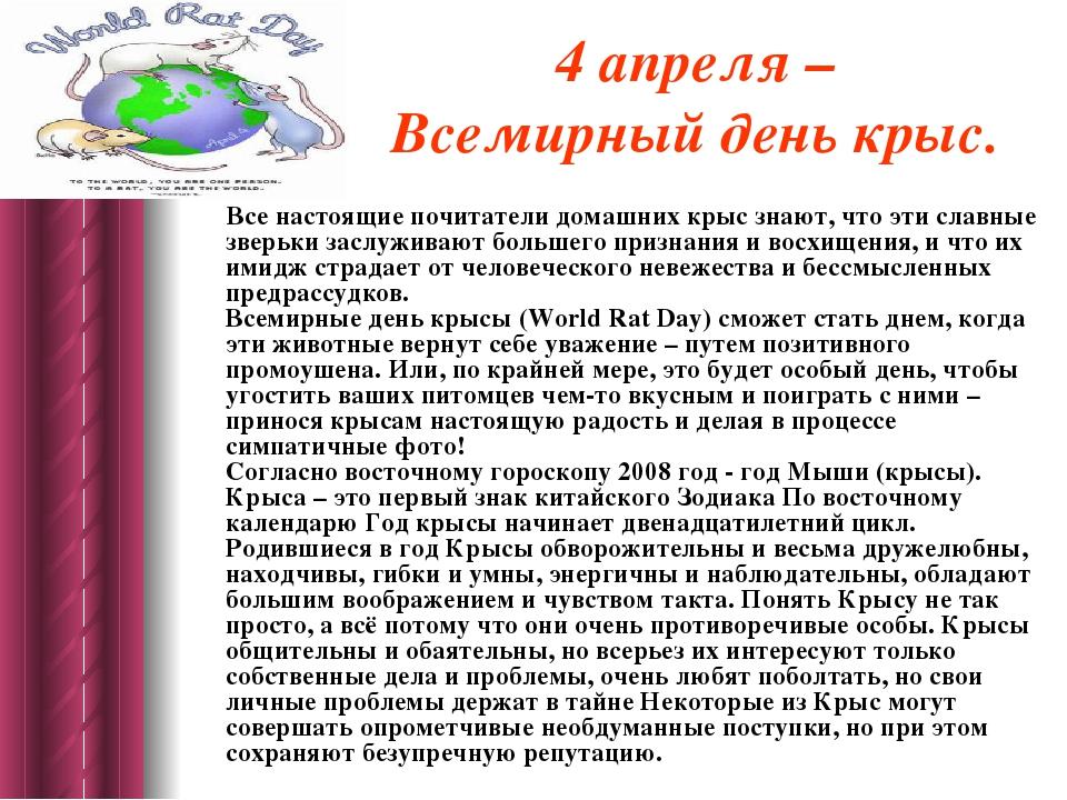 4 апреля – Всемирный день крыс. Все настоящие почитатели домашних крыс знают,...