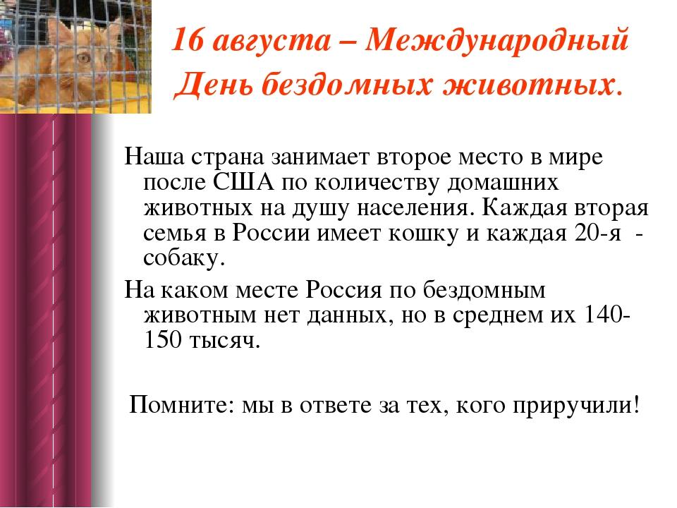 16 августа – Международный День бездомных животных. Наша страна занимает втор...