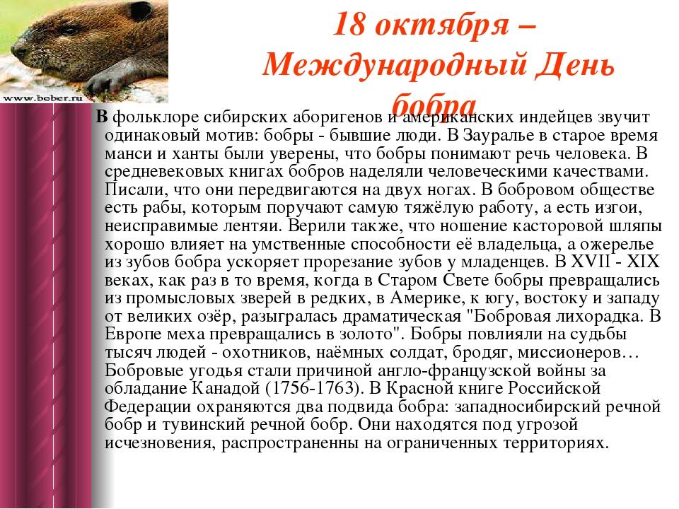 18 октября – Международный День бобра В фольклоре сибирских аборигенов и аме...
