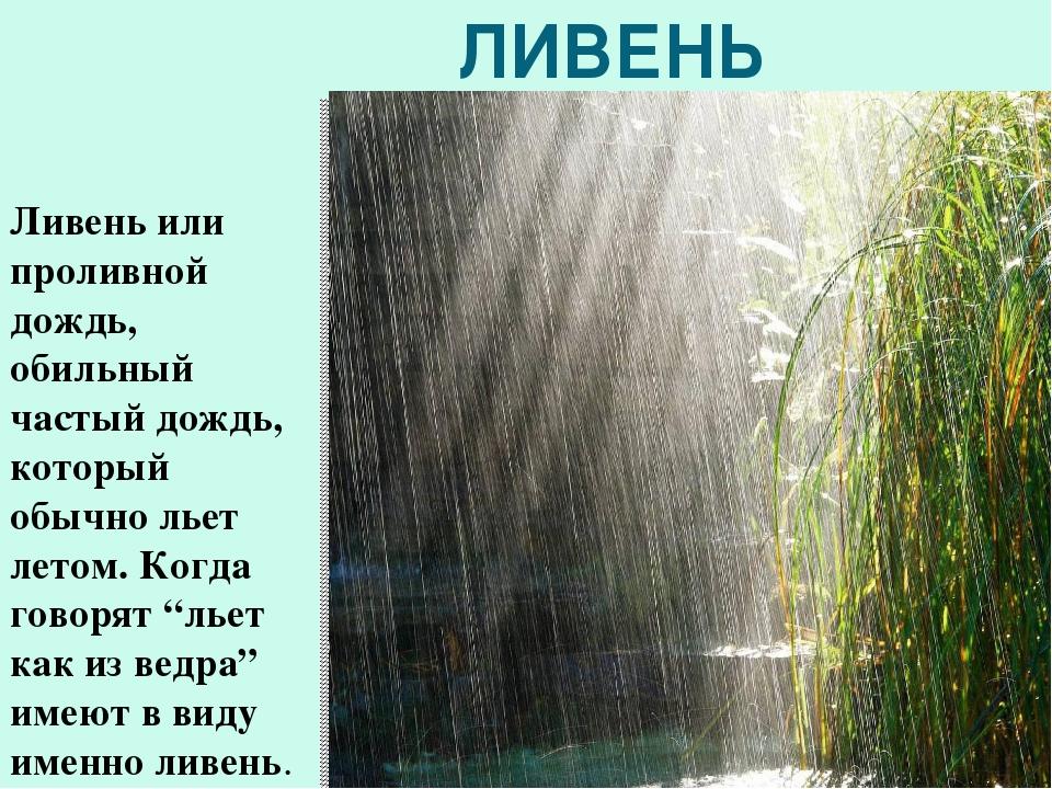 Картинка мой любимый дождик