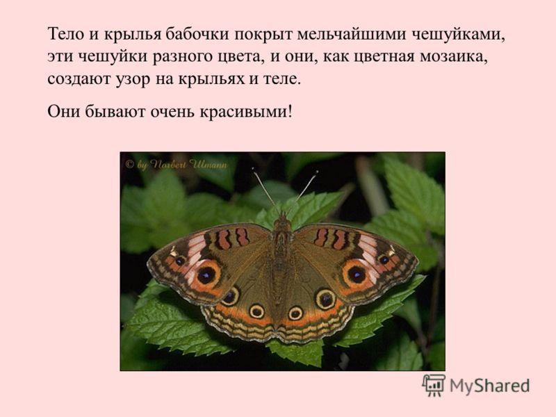 hello_html_7a237c72.jpg