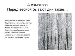 Стихи Ахматовой о Родине - Учебники, стихи, сочинения для