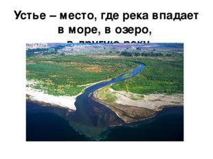 Устье – место, где река впадает в море, в озеро, в другую реку