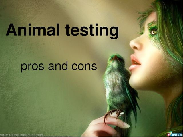 cons for animal testing essay The tools you need to write a quality essay or term paper essays related to animal experimentation- pro 1 the pros and cons of animal testing.