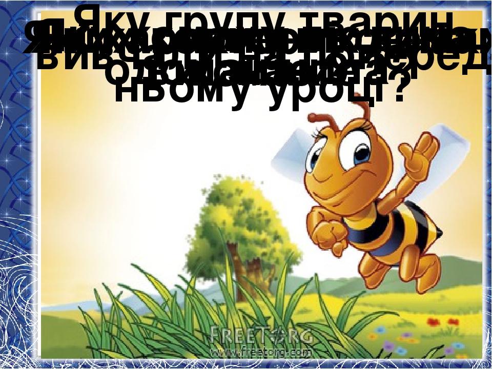 Яку групу тварин вивчали на поперед- ньому уроці? Які характерні ознаки комах...