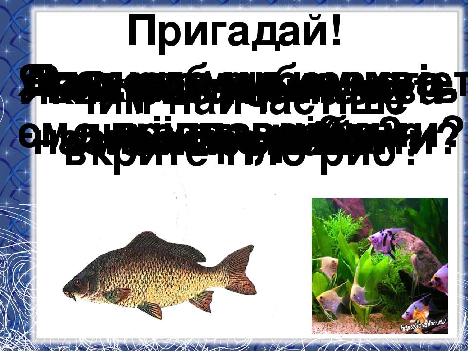 Пригадай! Яких тварин ми називаємо рибами? Без чого не можуть жити риби? Для...