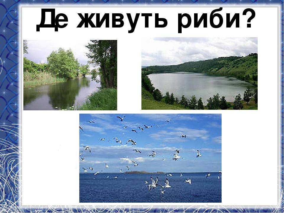 Де живуть риби?