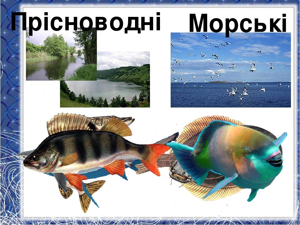 Прісноводні Морські