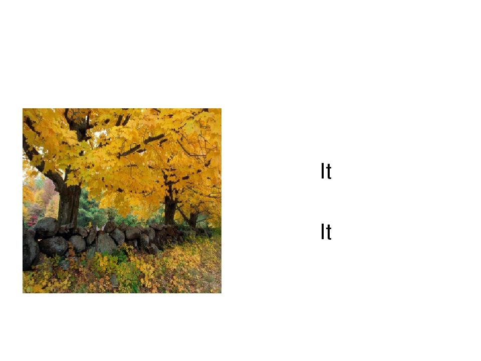 It is___________. It is___________.