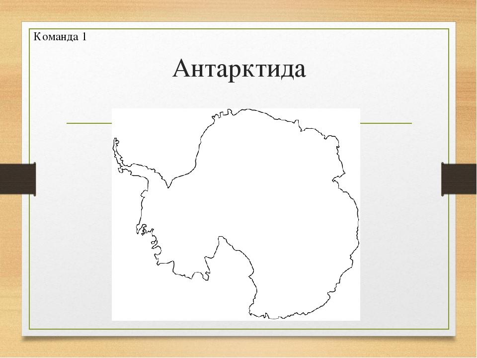 Антарктида Команда 1