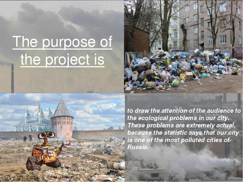 The purpose of the project is to draw the attention of the audience to the ec...
