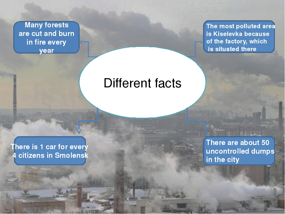 Different facts Many forests are cut and burn in fire every year There is 1 c...